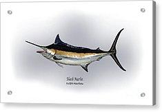 Black Marlin Acrylic Print