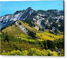 Black Mesa Rocky Peak In Autumn Acrylic Print