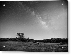 Acrylic Print featuring the photograph Black Oak And Milky Way by Alexander Kunz