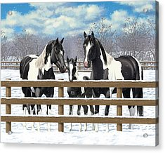 Black Paint Horses In Snow Acrylic Print