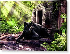 Black Panther Custodian Of Ancient Temple Ruins  Acrylic Print