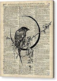 Black Raven Bird Acrylic Print by Jacob Kuch