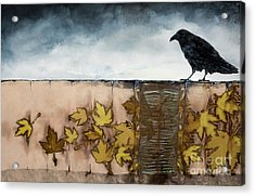Black Raven Sits Above Scattered Leaves Acrylic Print by Carolyn Doe
