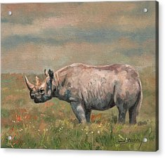 Black Rhino Acrylic Print by David Stribbling