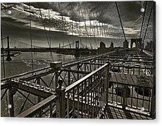 Black Web... Acrylic Print by Arkadiy Bogatyryov