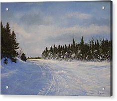 Acrylic Print featuring the painting Blackbear Ski Trail by Ken Ahlering
