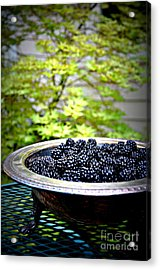 Blackberries In Silver Dish Acrylic Print