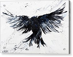 Blackbird Fly Acrylic Print by Linda Clayton