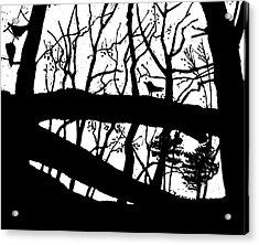 Blackbird In The Woods Acrylic Print by Martin Stankewitz