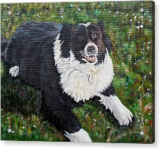 Acrylic Print featuring the painting Blackie by Marilyn  McNish