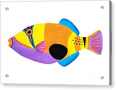 Blackpatch Triggerfish  Acrylic Print by Opas Chotiphantawanon