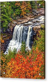 Blackwater Falls  Acrylic Print