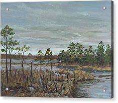 Blackwater National Wildlife Refuge Acrylic Print