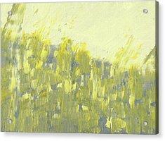 Bladverk I Motljus  - Sunlit Leafs_0158 Up To 76 X 51 Cm Acrylic Print