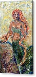 Blaise Acrylic Print by Linda Olsen