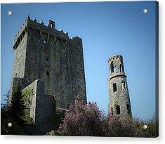 Blarney Castle And Tower County Cork Ireland Acrylic Print by Teresa Mucha