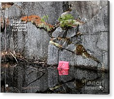 Blasted And Trashed Acrylic Print