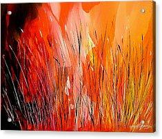 Blaze Acrylic Print by Yvette Sikorsky