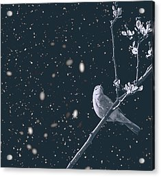 Bleak Winter Acrylic Print