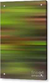 Blended Forest Acrylic Print