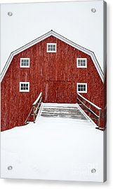 Blizzard At The Old Cow Barn Acrylic Print