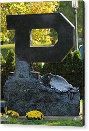 Block P Acrylic Print