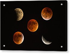 Blood Moon Eclipse Compilation Acrylic Print