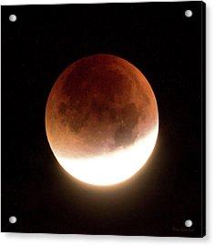 Blood Moon Eclipse Acrylic Print by Wim Lanclus