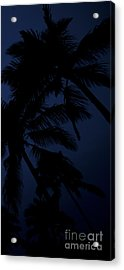 Blood Moon In Hawaii  - Triptych   Part 3 Of 3 Acrylic Print by Sean Davey