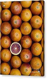Blood Orange Fruits Acrylic Print