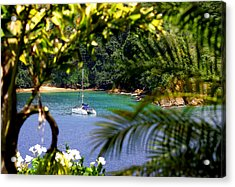 Bloody Bay Tobago Acrylic Print by Geoff Tydeman