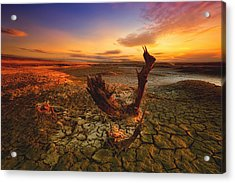 Bloody Sunset Acrylic Print by Piotr Krol (bax)