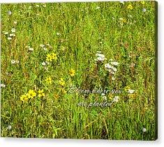 Bloom Acrylic Print