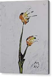 Bloom No. 8  Acrylic Print by Mark M  Mellon