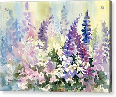 Bloomin' In June Acrylic Print by Cindy Spencer