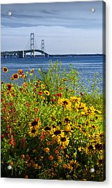 Blooming Flowers By The Bridge At The Straits Of Mackinac Acrylic Print