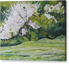 Blooming Acrylic Print by Francois Fournier