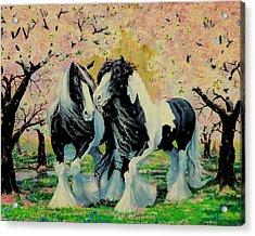 Blooming Gypsies Acrylic Print
