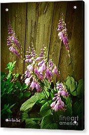 Blooming Hostas Acrylic Print by Julie Dant