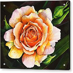 Blooming Marvellous Acrylic Print
