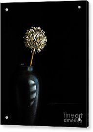 Blooming Onion Acrylic Print