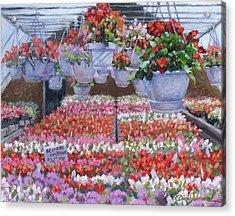 Blooms Ablaze Acrylic Print by L Diane Johnson