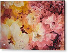 Blooms-of-summer Acrylic Print by Nancy Newman