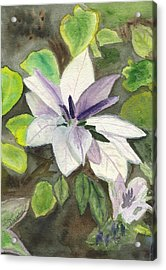 Acrylic Print featuring the painting Blossom At Sundy House by Donna Walsh