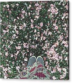 #blossom #feetporn #flowers #pretty Acrylic Print