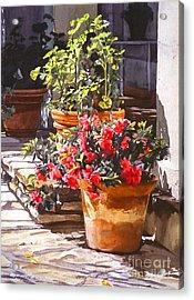 Blossom Niche Acrylic Print