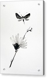 Blossomfly Acrylic Print by Sibby S