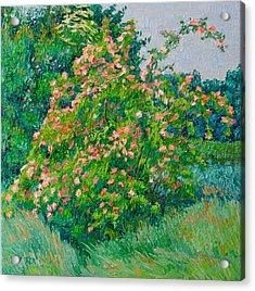 Blossoming Bush Landscape Acrylic Print by Vitali Komarov