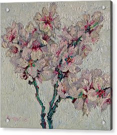 Blossoming Peaches Branch Acrylic Print by Vitali Komarov