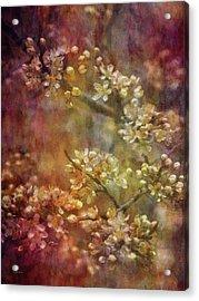 Blossoms 9664 Idp_2 Acrylic Print